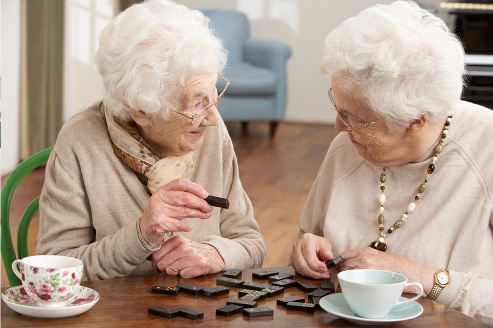 Care homes (without nursing)